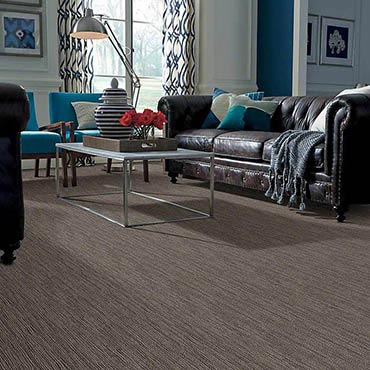 Anso® Nylon Carpet | Highland, IL