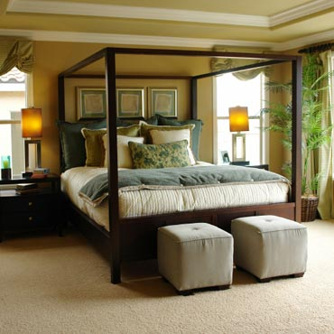 STAINMASTER® Carpet | Highland, IL